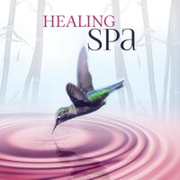 Healing Spa – Wellness Music Spa, Pure Mind and Body with Healing Massage Music, Harmony of Senses, Therapy Music for Relax, Inner Peace — Tranquility Day Spa Music Zone