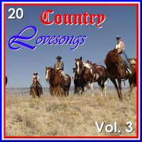 20 Country Love Songs, Vol. 3 — Various Diverse Compilation
