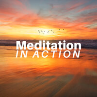 Meditation in Action CD - Soothing Zen Music with Nature Sounds for Deep Relaxation — Meditation Fountain