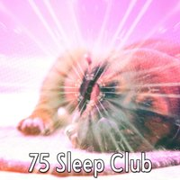 75 Sleep Club — Mother Nature Sound FX