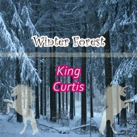 Winter Forest — King Curtis
