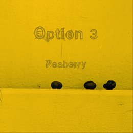 Peaberry — Option 3
