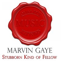 Stubborn Kind of Fellow - Quality Music — Marvin Gaye, Irving Berlin