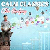 Calm Classics for Studying — Classical Study Music & Exam Study Classical Music Orchestra