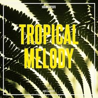 Tropical Melody — сборник