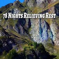 78 Nights Relieving Rest — Rest & Relax Nature Sounds Artists