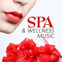 Spa & Wellness Music – Calm Nature Sounds for Sauna & Wellness, Meditation & Pure Relaxation, Perfect for the Massage Therapy & Cosmetic Treatments — Sauna Spa Paradise