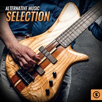 Alternative Music Selection — сборник