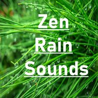 14 Natural Zen & White Noise Tracks — Zen Music Garden, White Noise Research, Zen Music Garden, White Noise Research, Nature Sounds