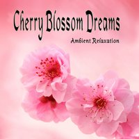 Cherry Blossom Dreams — Cherry Blossom Dreams