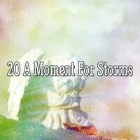 20 A Moment for Storms — Thunderstorms