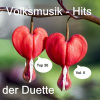 Top 30: Volksmusik-Hits der Duette, Vol. 5 — сборник