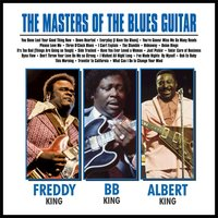 The Masters of the Blues Guitar…… BB, Albert and Freddy — B.B. King