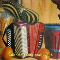 Vallenatos Tradicionales Vol 5 — сборник