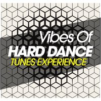 Vibes of Hard Dance Tunes Experience — сборник