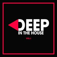 Deep in the House, Vol. 1 — сборник