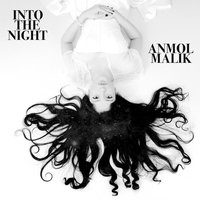 Into the Night - Single — ANMOL MALIK