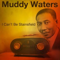 I Can't Be Staisfield — Muddy Waters