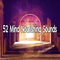 52 Mind Nourishing Sounds — Exam Study Classical Music Orchestra