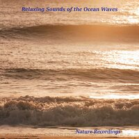 Relaxing Sounds of the Ocean Waves — Peter Samuels