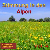 Party in the Alps - Stimmung in Den Alpen Vol. 4 — Engelbert Pointecker