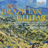 The Brazilian Guitar — Flavio Apro
