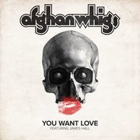 You Want Love — Afghan Whigs