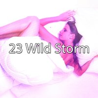 23 Wild Storm — Thunderstorms