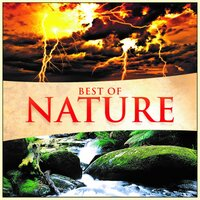 Best of Nature — Global Journey