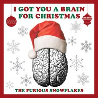 I Got You a Brain for Christmas — The Furious Snowflakes
