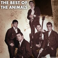 The Best Of The Animals — The Animals