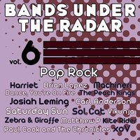 Bands Under the Radar, Vol. 6: Pop Rock — сборник
