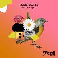 Introducing 05 — Bassically
