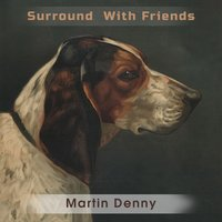Surround With Friends — Martin Denny