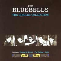 The Singles Collection — The Bluebells