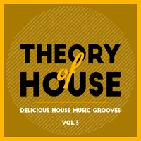 Theory of House (Delicious House Music Grooves), Vol. 3 — сборник