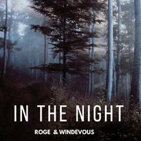 In The Night — Miguel Roge, Windevous