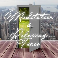 Meditation and Relaxing Tunes — сборник