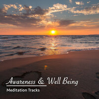 16 Awareness and Well Being Meditation Tracks — Meditation Awareness, Deep Sleep Meditation, Kundalini: Yoga, Meditation, Relaxation