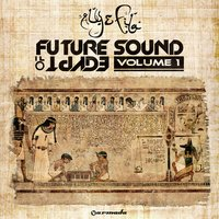 Future Sound Of Egypt, Vol. 1 — Aly & Fila