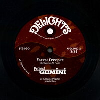 Forest Creeper / Monsters at Gardens End — Project Gemini