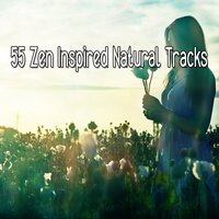55 Zen Inspired Natural Tracks — Massage Therapy Music