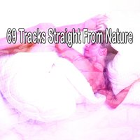69 Tracks Straight From Nature — Rest & Relax Nature Sounds Artists
