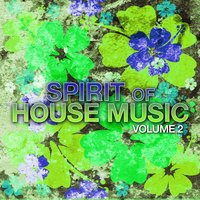 Spirit of House Music, Vol. 2 — сборник
