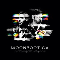 Moonlight Welfare - Limited Edition — Moonbootica