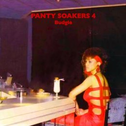 Panty Soakers 4 — Budgie