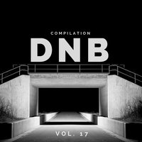 DnB Music Compilation, Vol. 17 — сборник