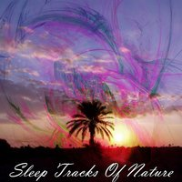 Sleep Tracks Of Nature — Nature Sounds Nature Music, Sleep Sounds of Nature, Rest & Relax Nature Sounds Artists