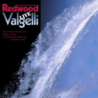 Valgelli — REDWOOD la band cantautorale