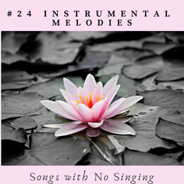 #24 Instrumental Melodies - Songs with No Singing — Djelimady Martins